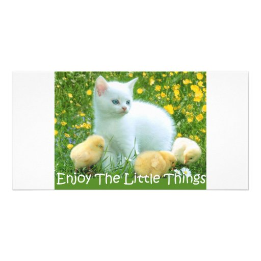 Enjoy The Little Things Cute Animals Photo Greeting Card