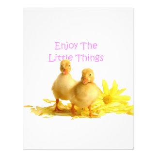 Enjoy The Little Things, Ducklings Flyer