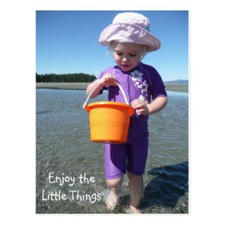 Enjoy the Little Things Postcard