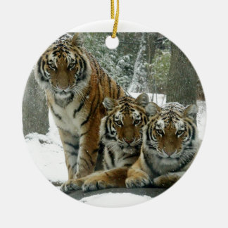 ENJOY THE SNOW CHRISTMAS ORNAMENT