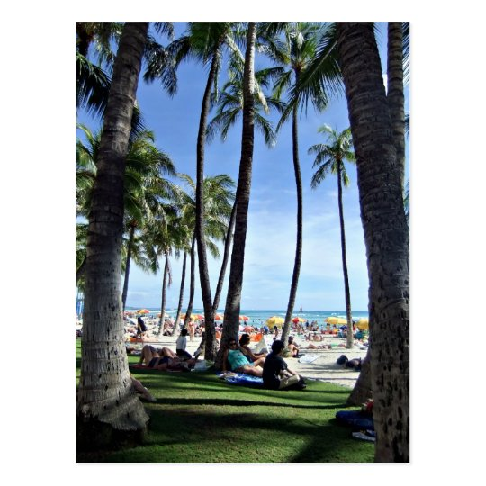 Enjoying Waikiki Beach Postcard