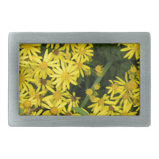 Enlgish yellow daisy photography belt buckles