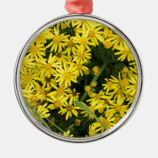 Enlgish yellow daisy photography christmas ornament
