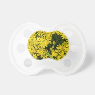 Enlgish yellow daisy photography dummy