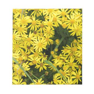 Enlgish yellow daisy photography notepad