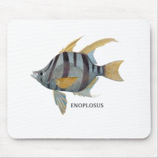 ENOPLOSUS MOUSE PAD