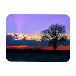 Enter Sunlight Rectangular Photo Magnet
