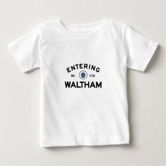 Entering Waltham Tees