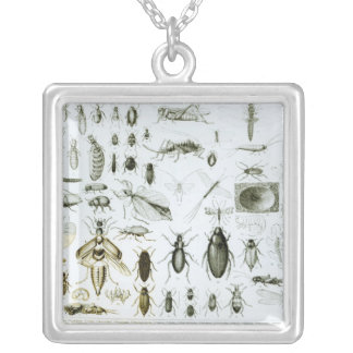 Entomology Insects Silver Plated Necklace