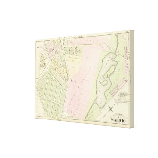 Eonard's Pond Atlas Map Canvas Print