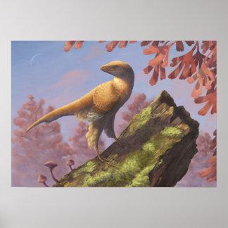 Eosinopteryx Print