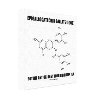 Epigallocatechin gallate (EGCG) Potent Antioxidant Canvas Prints