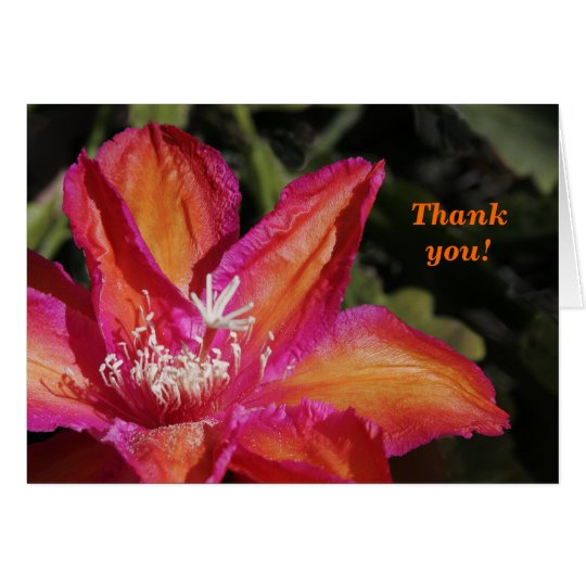 Epiphyllum Thank You Card