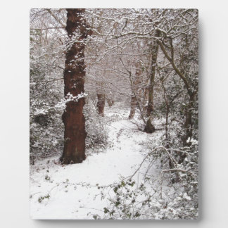 Epping Forest in the snow. Plaque