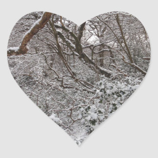 Epping Forest In Winter Sticker