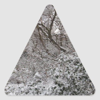 Epping Forest In Winter Triangle Sticker