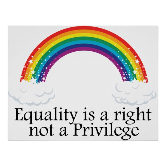 Equality is a right not a privilege poster