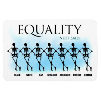 Equality Rectangular Magnets