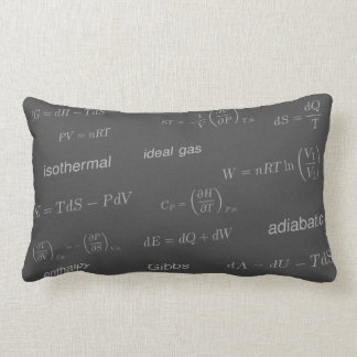 Equations of Thermodynamics Cushions