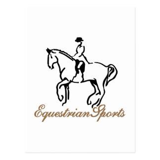 Equestrian Sports Postcard