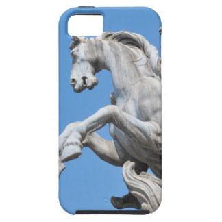 Equestrian statue iPhone 5 covers