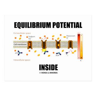 Equilibrium Potential Inside Active Transport Postcards