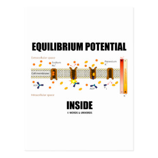 Equilibrium Potential Inside Active Transport Postcards