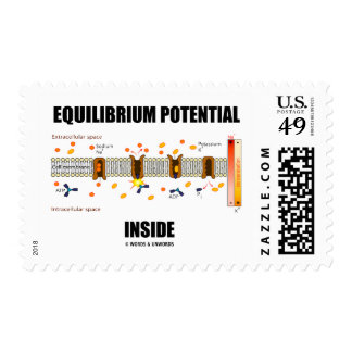Equilibrium Potential Inside Active Transport Stamp
