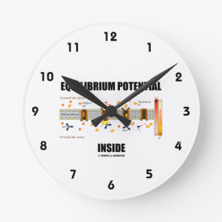 Equilibrium Potential Inside Active Transport Wall Clocks