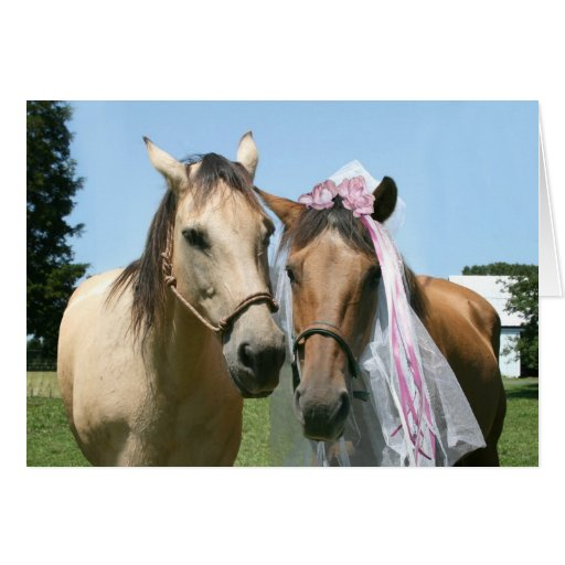 Equine bride and groom card