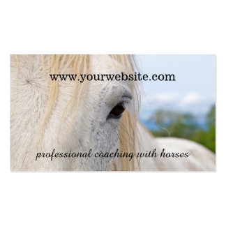Equine Guided Coaching Business Card