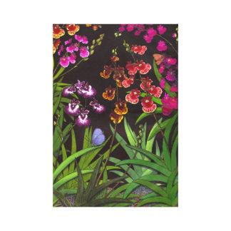 Equitant Oncidium Tolumnia Orchids Wrapped Canvas Canvas Prints