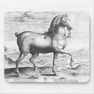 Equus Germanus Mouse Pad