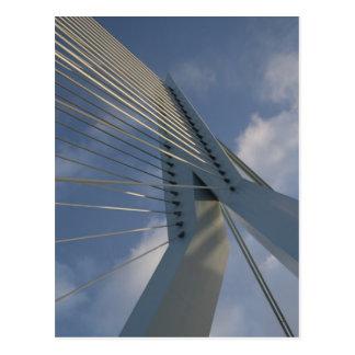 Erasmus Bridge, Rotterdam Postcard