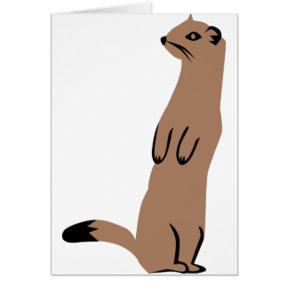 Ermine - Stoat - Weasel Greeting Card