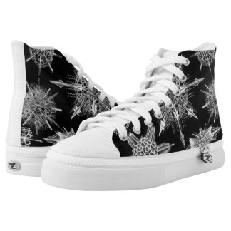 Ernst Haeckel Acanthophracta Shoes