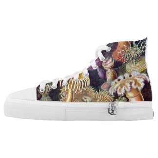 Ernst Haeckel Actiniae-a Shoes