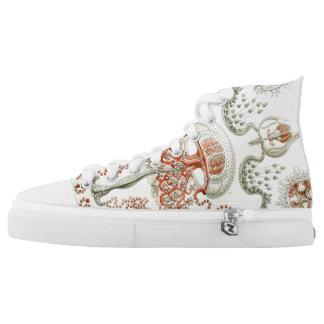 Ernst Haeckel Anthomedusae Jellyfish Shoes