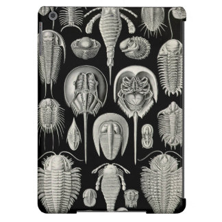 Ernst Haeckel Aspidonia iPad Air Cover