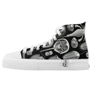 Ernst Haeckel Aspidonia Shoes