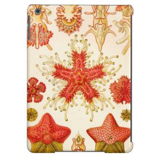 Ernst Haeckel Asteridea iPad Air Case