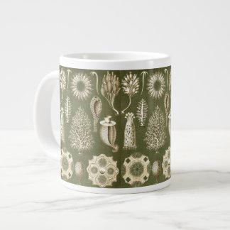 Ernst Haeckel Calcispongiae Jumbo Mug