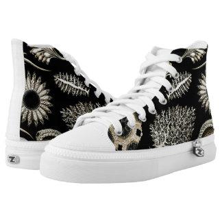 Ernst Haeckel Calcispongiae Shoes