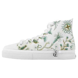 Ernst Haeckel Campanariae Shoes