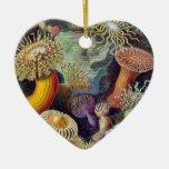 Ernst Haeckel Christmas Tree Ornaments