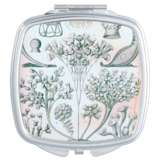 Ernst Haeckel Ciliata compact mirror