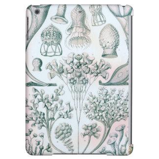 Ernst Haeckel Ciliata ipad air case