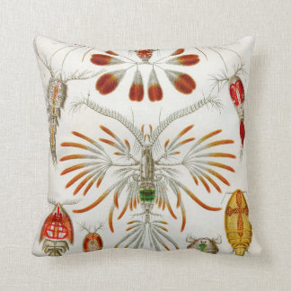 Ernst Haeckel Copepodae two sided pillow