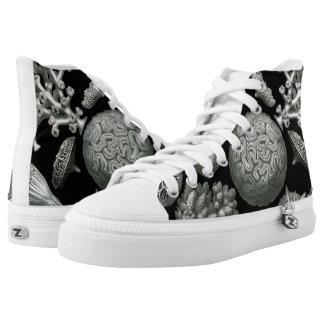 Ernst Haeckel Diatomea Hexacoral Shoes