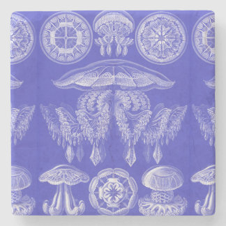 Ernst Haeckel Discomedusae III Stone Coaster